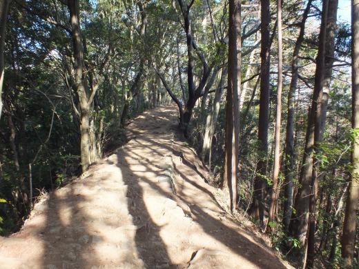 Mt. Takao trail